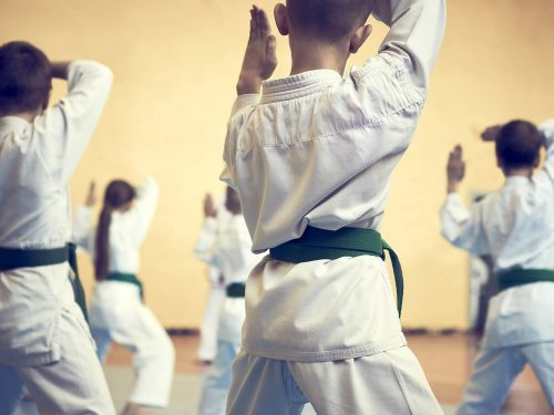 Children participating in a karate class
